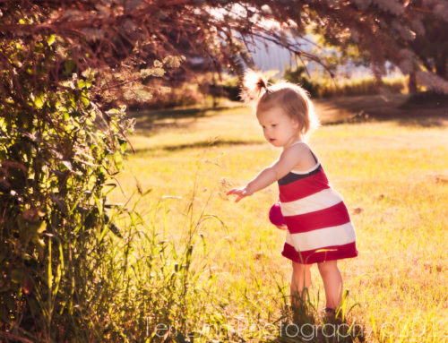 New Budget-Friendly Photo Session Pricing | Beloit and Janesville, WI Children's Portaits